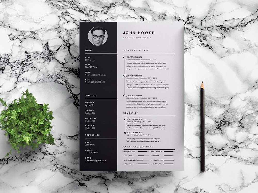 Free Clean CV Template in Indesign Format